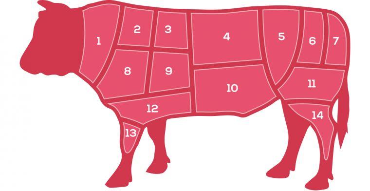 Beef butchers diagram