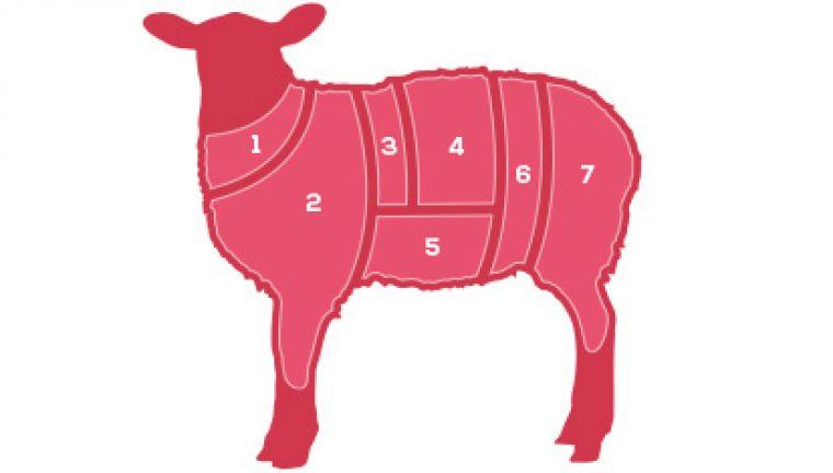 Lamb butchers diagram